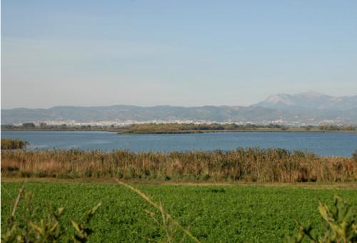 Lago Lysimachia
