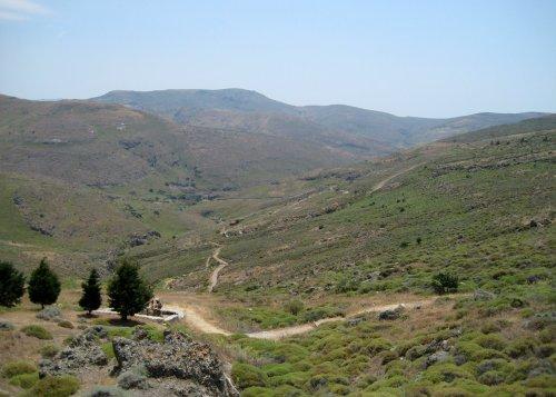Lesbos y su Bosque Petrificado