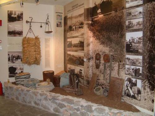 El Museo del Pan de Amfikleia, único en su género