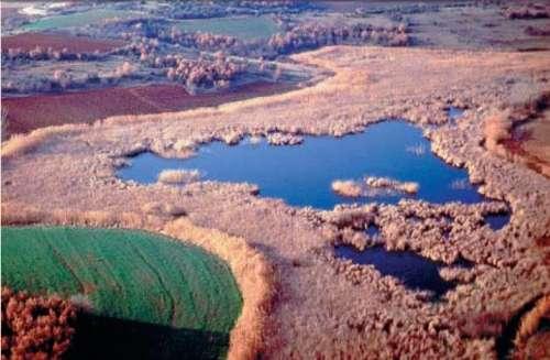 Lagunas del rio Nestos